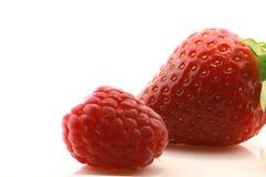 fraise fraîche de framboise Image stock