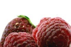 fraise fraîche de framboises Images stock
