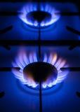 Fraise-mère et flammes de gaz Photographie stock