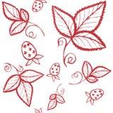 Fraise rouge et modèle sans couture de feuilles illust tiré par la main d'encre Images libres de droits
