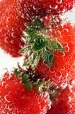 fraises Images stock