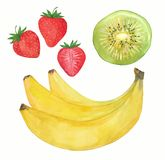 Fraises, bananes et kiwi Photos libres de droits