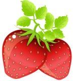 fraises blanches Images libres de droits