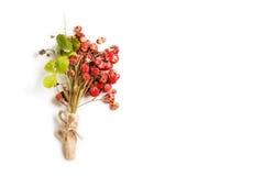 Fraises bouquet des baies et des feuilles du fraisier commun d'isolement sur le fond blanc Image stock