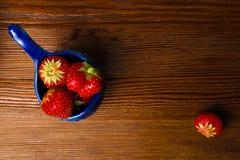 Fraises dans la cuvette bleue sur la table en bois de vintage Fraise juteuse rouge photos libres de droits
