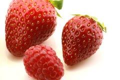 fraises fraîches de framboise Photos libres de droits