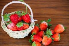 Fraises fraîches, fraises dans un panier dans le jardin, fruit sain Photographie stock libre de droits