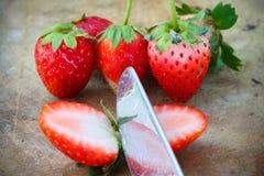 Fraises fraîches, fraises dans un panier dans le jardin, fruit sain Photographie stock