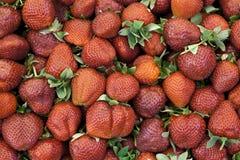 Fraises fraîches sur un marché de village Plan rapproché juteux mûr de fraises Grand fond pour une confiture de label, confiture  Photos stock