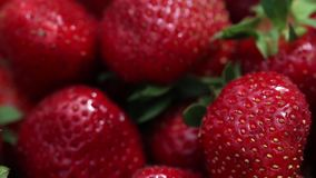 Fraises rouges appétissantes et belles Fraises fraîches Fraise sur le fond rouge La meilleure texture rouge de fraise clips vidéos