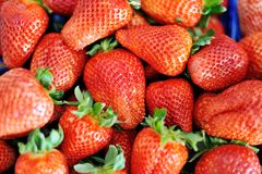 Fraises rouges fraîches délicieuses juteuses Photographie stock