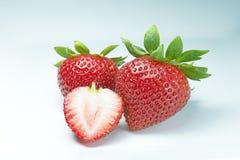 fraises sur le blanc - image courante Photos libres de droits