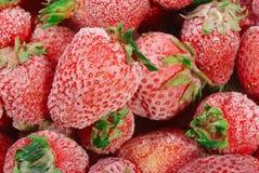 fraises surgelées Photo stock