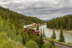 Fraktdrev nationalpark i för pilbågedalen - Banff Arkivbild