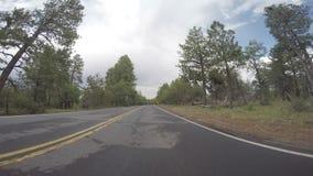 Framåt sikt för se av bilkörning arkivfilmer