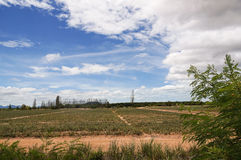 Fram with blue sky. Landscape fram with blue sky and clouds background royalty free stock images