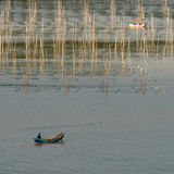 Fram de la alga marina Fotografía de archivo libre de regalías