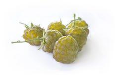 Framboesa amarela Foto de Stock