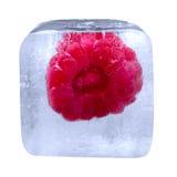 Framboesa congelada no cubo de gelo Fotos de Stock Royalty Free