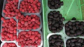 Framboesa e amora-preta Bagas orgânicas na cesta plástica em um mercado dos farmer's Framboesas e fundo das amoras-pretas fresc Foto de Stock