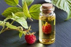 Framboesa fresca com uma garrafa do óleo de semente da framboesa Fotos de Stock