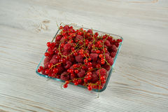 Framboesa fresca e corinto vermelho Imagens de Stock Royalty Free
