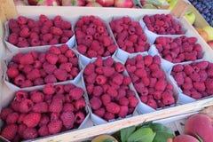 Framboesa fresca no mercado Imagem de Stock Royalty Free
