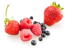 Framboesa, morangos e uvas-do-monte Fotografia de Stock Royalty Free
