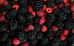 Framboesas e amoras-pretas misturadas, 100% orgânico, pronto para comer lavado fresco escolhido Fundo da fruta Fotos de Stock