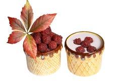 Framboesas e iogurte das bagas em umas canecas da argila Foto de Stock