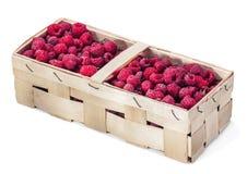 Framboesas frescas na cesta Imagem de Stock