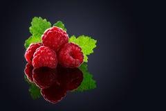 Framboesas maduras orgânicas frescas em um fundo preto Imagem de Stock Royalty Free