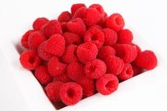 Framboesas vermelhas frescas Fotos de Stock