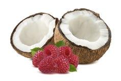 Framboise à moitié cassée de noix de coco d'isolement sur le fond blanc Photographie stock libre de droits