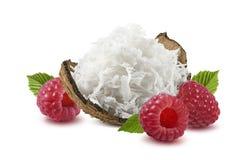 Framboise déchiquetée de coquille de noix de coco d'isolement sur le fond blanc Photographie stock libre de droits