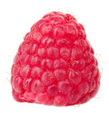 Framboise d'instruction-macro de fruits de framboises Photo libre de droits