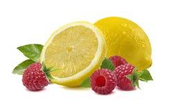 Framboise de citron sur le blanc - composition horizontale Photo stock
