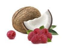 Framboise 2 de noix de coco d'isolement sur le fond blanc Photographie stock