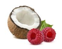 Framboise 1 de noix de coco d'isolement sur le fond blanc Photos libres de droits