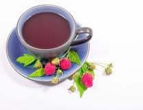 Framboise de thé - plan rapproché Image stock