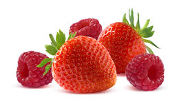 Framboise et fraise sur le fond blanc Photo libre de droits