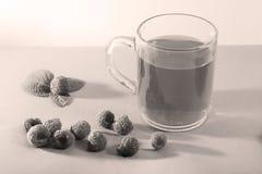 Framboise et thé Photos stock