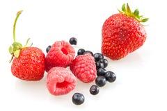 Framboise, fraises et myrtilles Photographie stock libre de droits