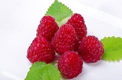 Framboise (idaeus de Rubus) Image libre de droits