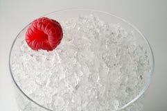 Framboise sur la glace Photographie stock libre de droits