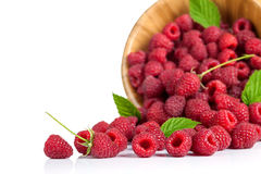 Framboises Photo stock