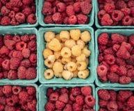 Framboises blanches et rouges sur un marché d'agriculteurs de New York images libres de droits
