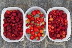 Framboises et fraises Image stock