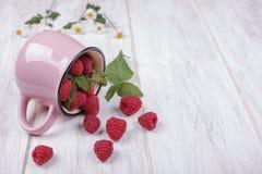 Framboises et la tasse rose Photo libre de droits
