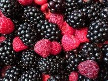 Framboises et mûres mélangées, 100% organique, tout préparé lavé frais sélectionné Fond de fruit image stock